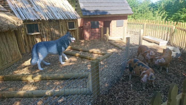Ark Open Farm3