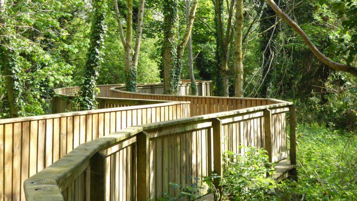 Stormont Estate Boardwalk