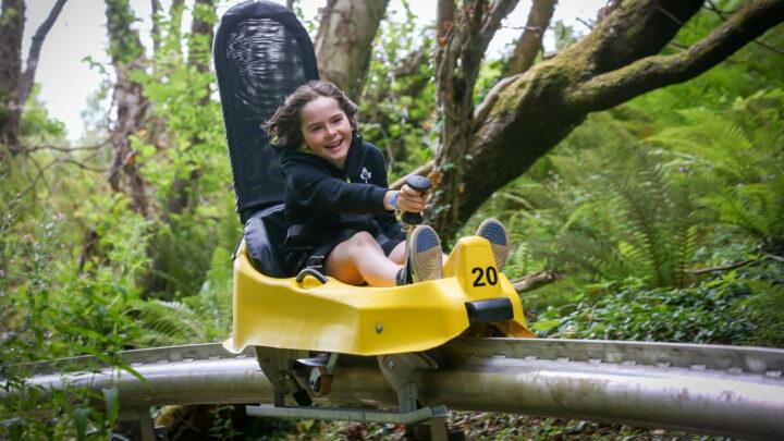 Colin Glen Alpine Coaster (1)