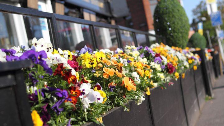 Errigle Inn flowers
