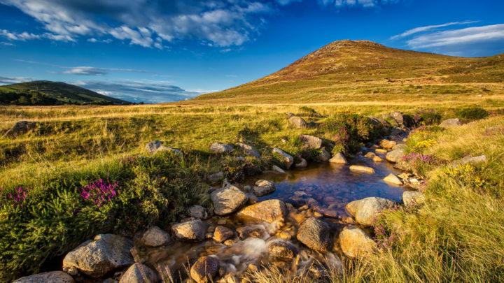 Giant Tours Ireland 2 (8)
