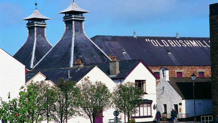 Old Bushmills Distillery Co Ltd