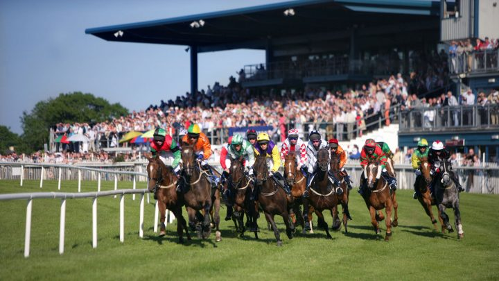 Race Course at Down Royal