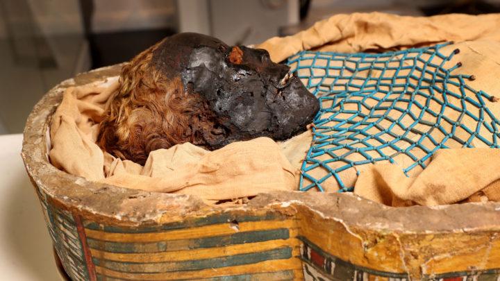Ulster Museum Mummy